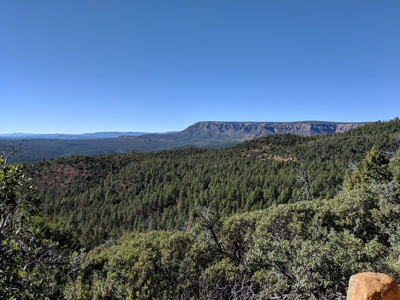 View of the rim across the valley formed by Tonto creek. (Note that this photo was taken from the trail, which has been rerouted from what is currently shown on the map.)