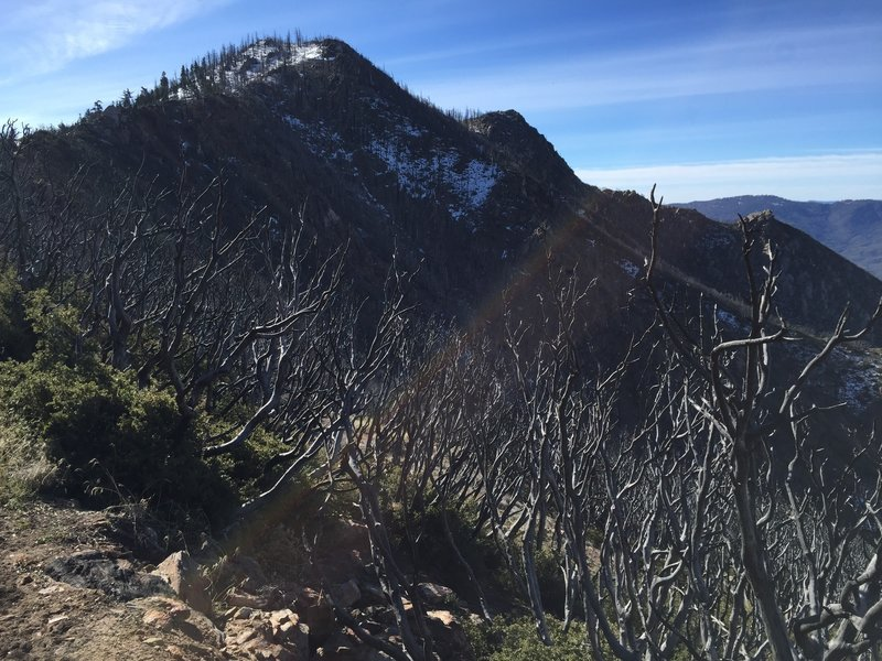View of Spitler Peak from the PCT on the Desert Divide.