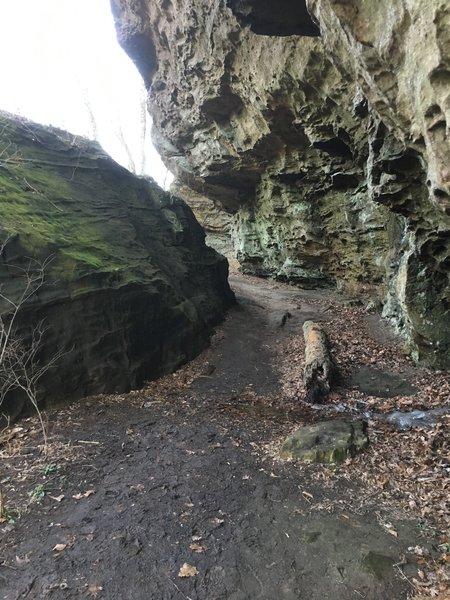 Under the bluffs at Trillium Trail.