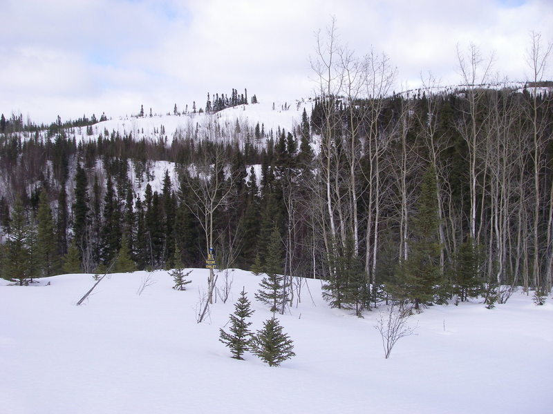 Snowshoe trail B1 just before the ravine with sign showing shortcut back to the chalet.