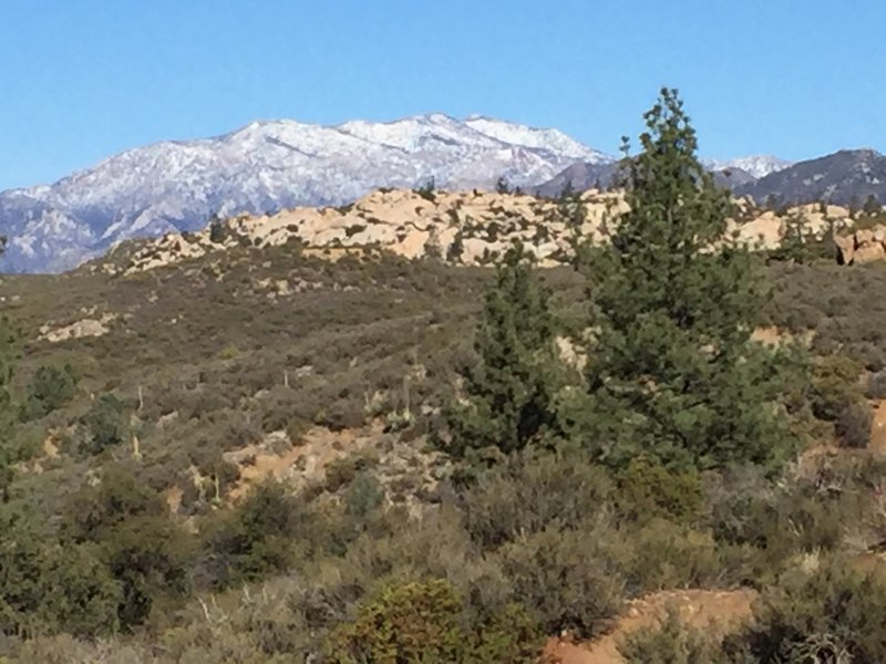 Heading north on the PCT towards Live Oak Spring.