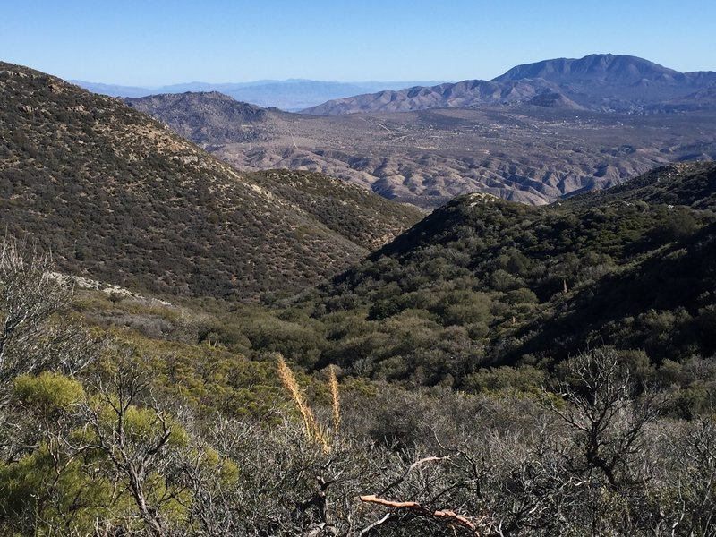 From the PCT looking into Live Oak Canyon.