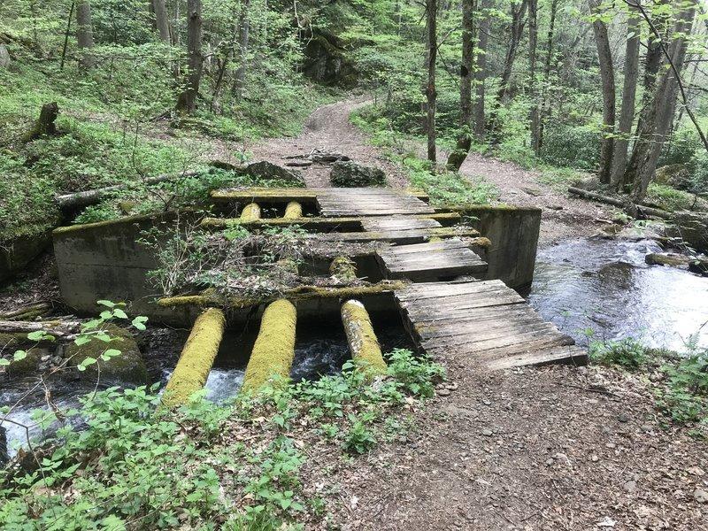 Near trailhead of Bowlen's Creek