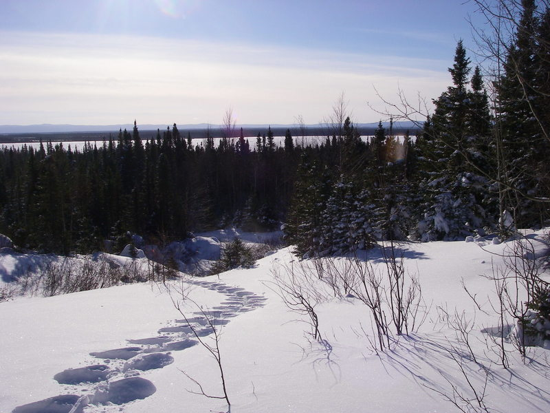 Snowshoe trail E1 by Games Trail quarry