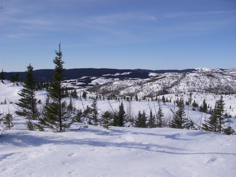 View of Lynx Trail from the summit of snowshoe trail E3