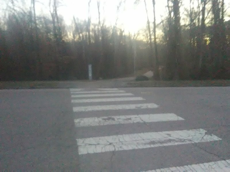 Trail crossing at Elmira Ave.