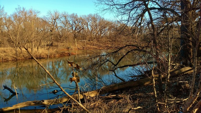 Small pond in February, with ducks, turtles, etc. in warmer months, just past the Visitor Center along Courage Trail.