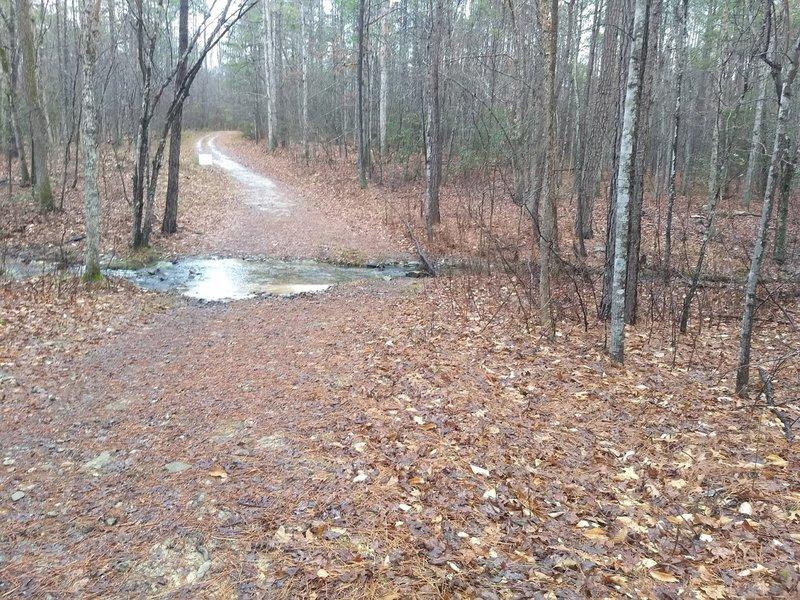 Fendley Trail Loop A stream crossing.