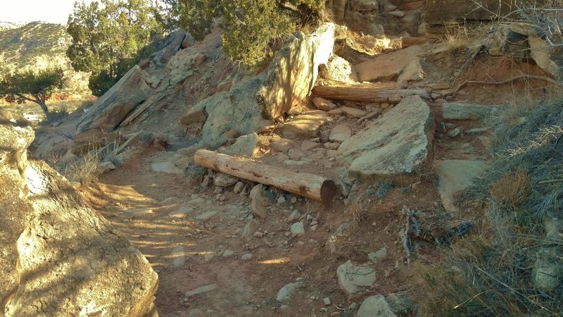Go up to the right here when heading south on CCC Trail, to hike the Goodnight Peak Scenic Loop. No trail sign for it.