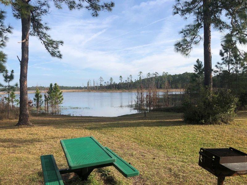 Farles Lake - Ocala National Forest