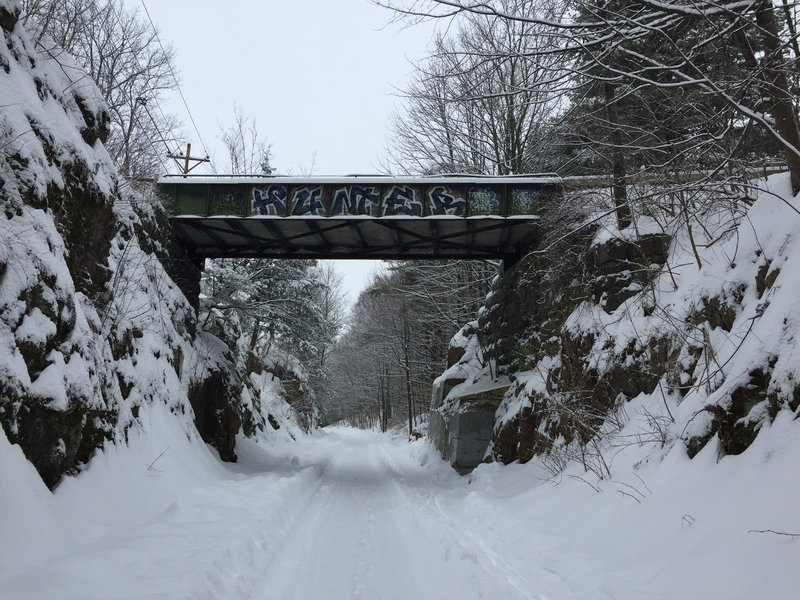 The trail shortly after a snowstorm.