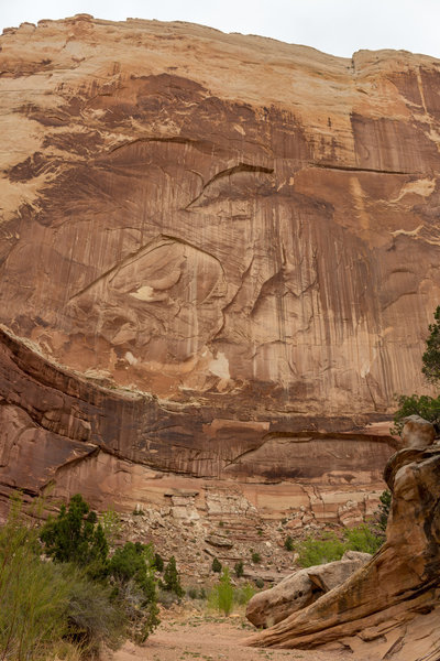 The walls in Lower Muley Twist Canyon reach more than 700 hundred feet above you.