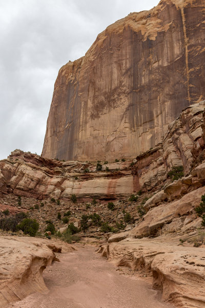 Massive towers made of Kayenta Sandstone watching over Lower Muley Twist Canyon.