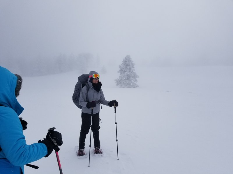 Near whiteout conditions.