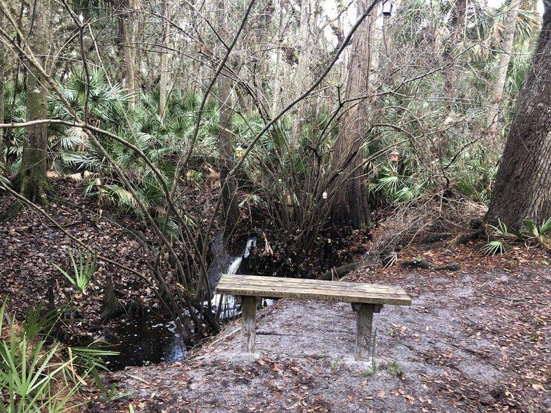Zen Bird Sanctuary - running water, birdhouses and a bench.