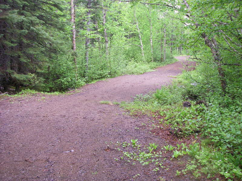 Games Trail in early summer.