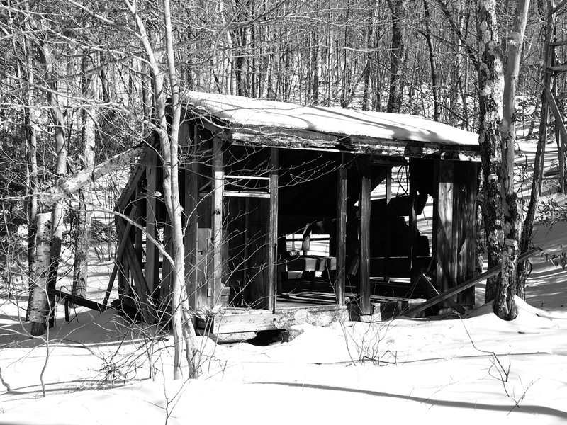 Abandoned Cabin.