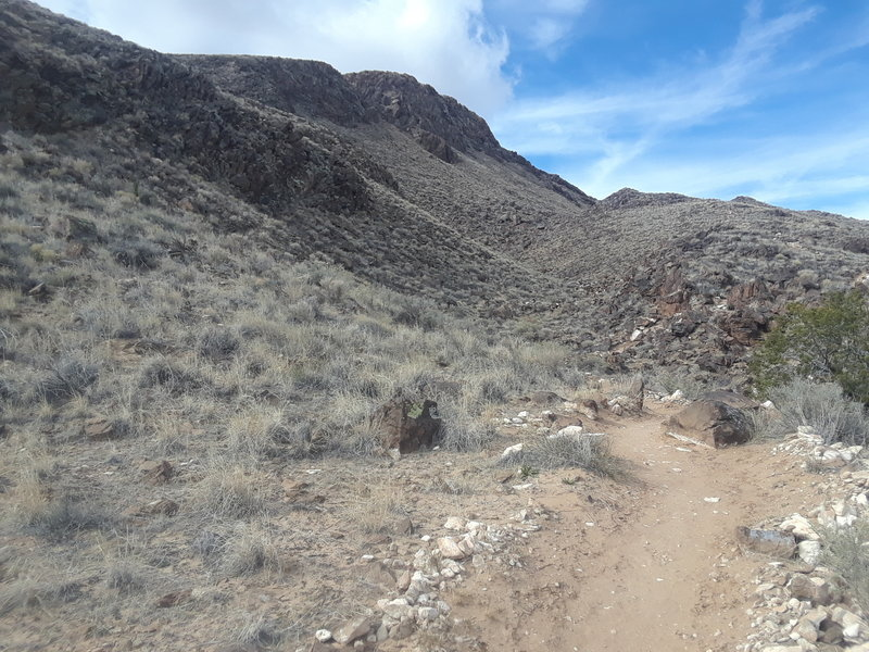 Heading north on Overlook Trail.