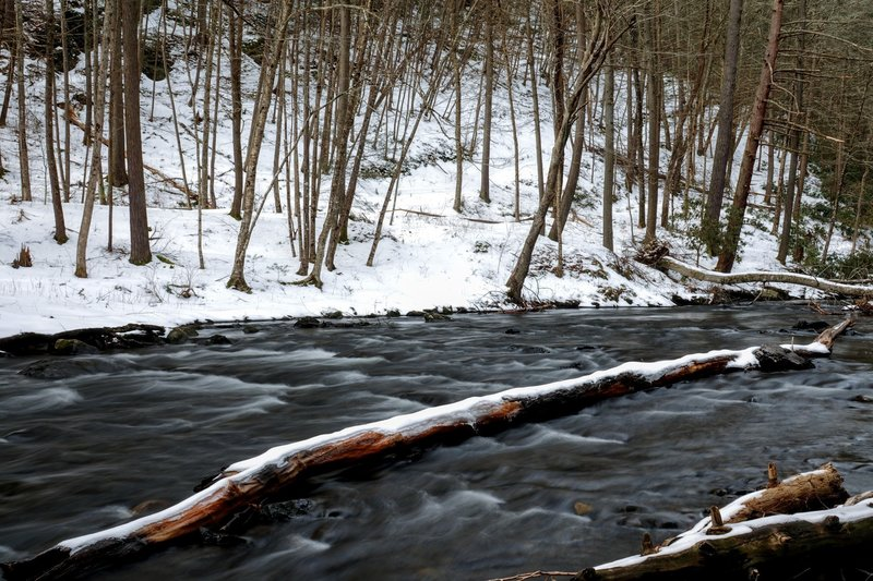 Most only experience the cascades when visiting Raymondskill Falls, but taking a walk off the beaten path to view the creek downstream is rewarding in and of itself.