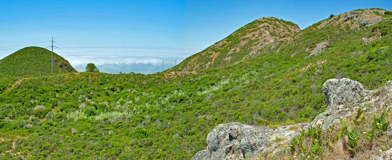 Montara Knob and Peak Mtn from the Montara Bowl.