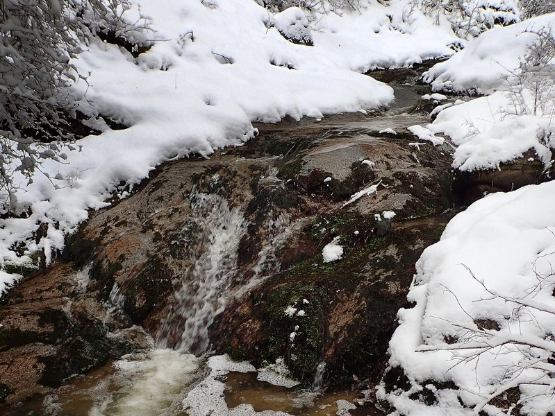 One of the small cascades along Cantrall Creek
