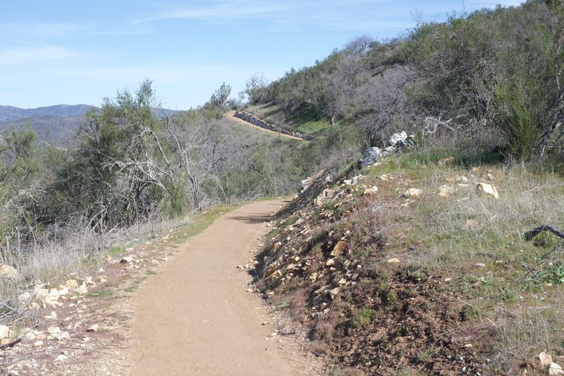 The trail narrows if you follow it straight ahead. It is man made, so it is easy traveling and well groomed.