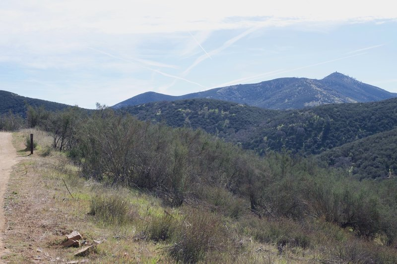 The Jawbone Trail descends to the right and you can see the North Chalone fire tower off in the distance.