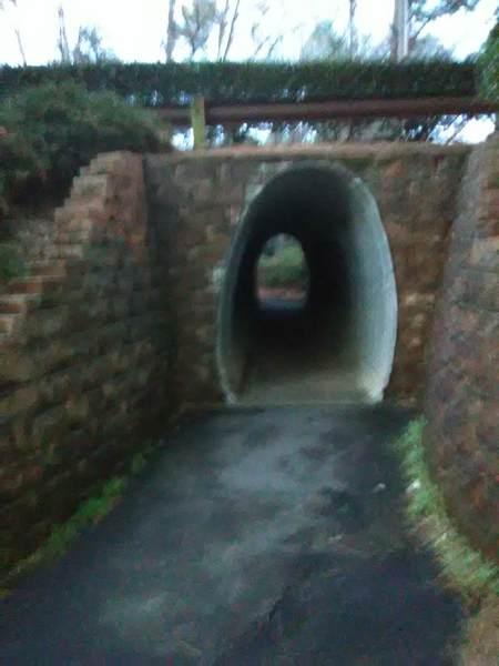 Tunnel under Woodcroft Parkway