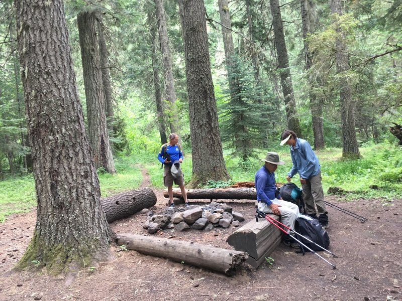 Campsite approximately 5 miles from lower trailhead. Near junction of Coyote Creek and North Fork Umatilla River.