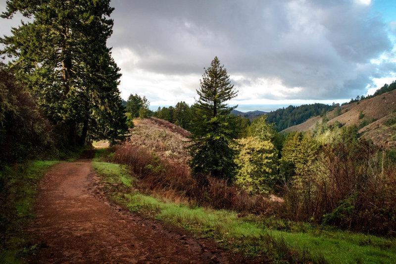 Harkins Ridge