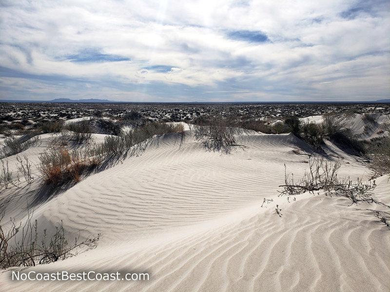 Ripples in the Salt Basin Dunes looking west.