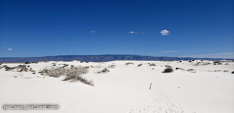 The Sacramento Mountains seen from the Dune Life Nature Trail.
