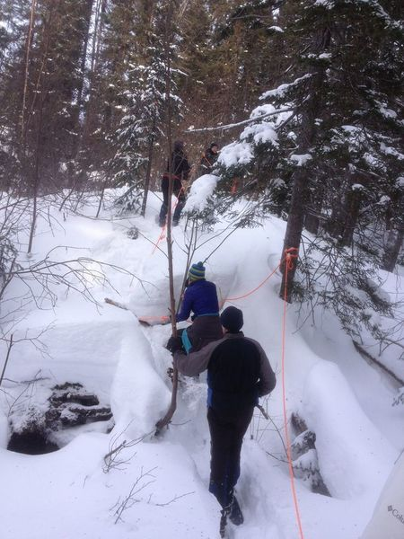 Crossing the ravine on Snowshoe Trail B1.