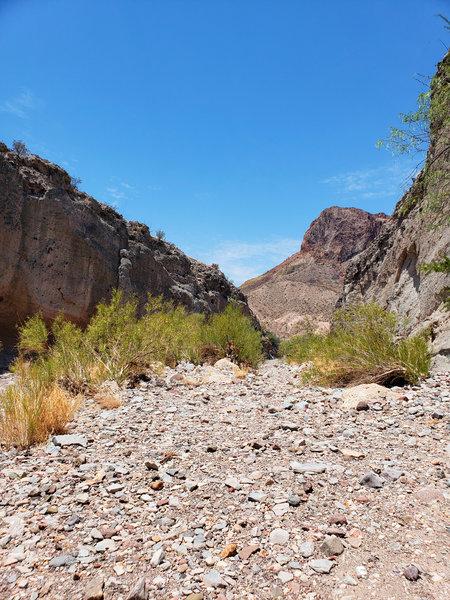 Tuff Canyon.