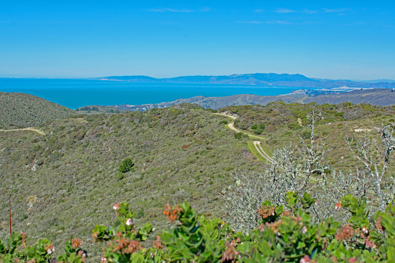 Point Reyes and Tamalpais from end of road. The dirt road in the center is within inaccessible Crystal Springs Watershed.