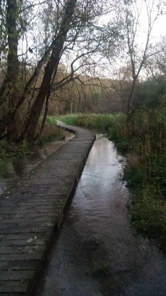 Indian Creek Boardwalk