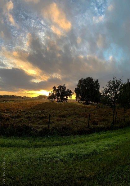 Sunrise at Oak Creek on the FNST
