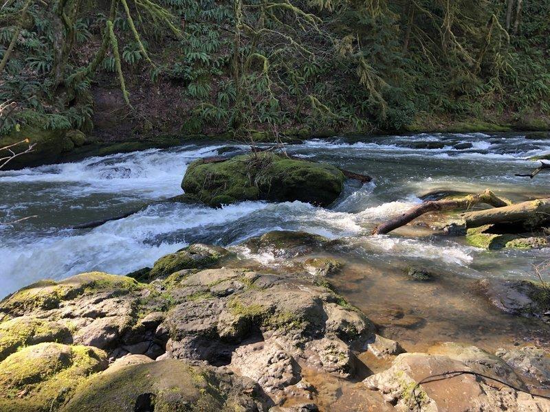 Lacamas Creek on the way to Lower Falls