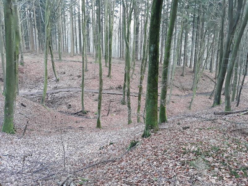 View of the mtb track in the gorge / Udsigt over mtb-sporet i Kløften