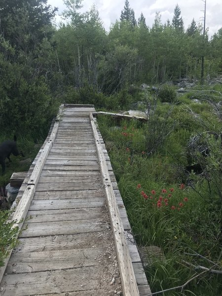 Cute bridge along the way to She Lake