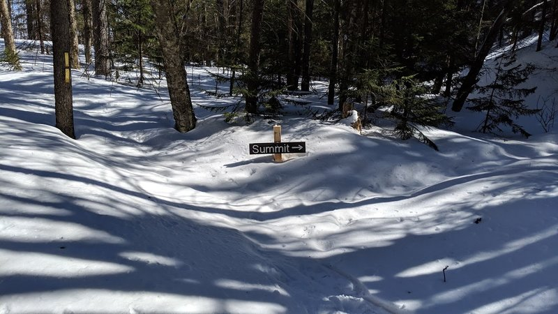 Plymouth Mountain. Trail Junction with deep snow pack. March 9, 2019
