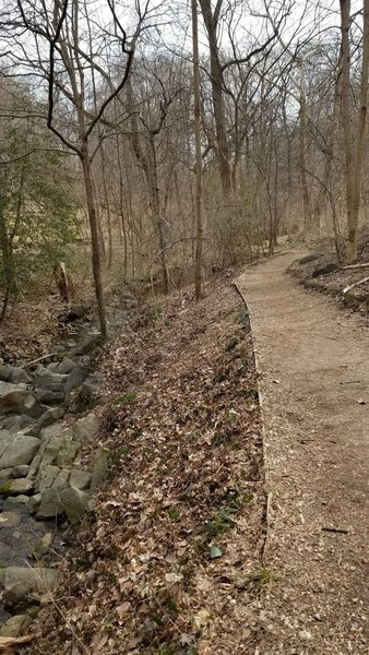 BK West of Glover-Archbold Path connector