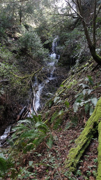 Stairstep Falls at the end of the trail.