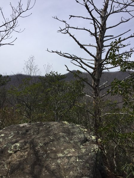 Rocky Head summit and intersection with East Ridge Trail.
