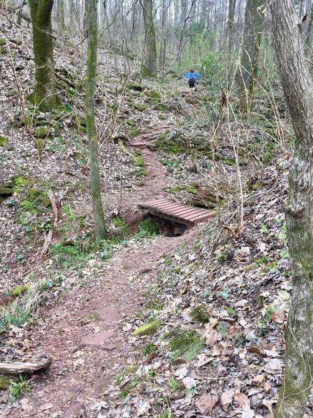 Foot bridge for creek crossings