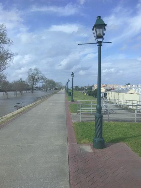 Looking toward Algiers Point