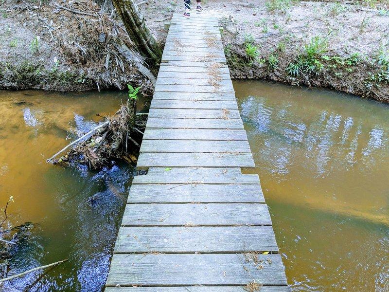 Trail Bridge over Big Creek