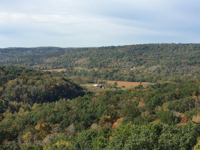 View from Buzzardroost Rock overlook in September