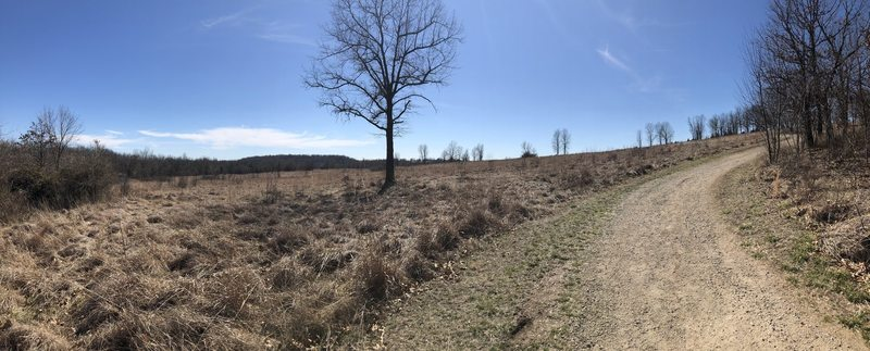 Sweeping field vistas of the legendary battlefield.
