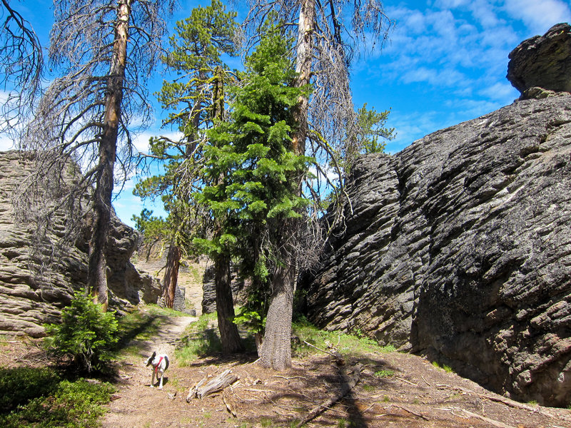 Palisades - Gearhart Wilderness, Oregon
